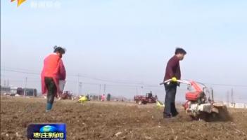 """山亭:防 """"疫"""" 春耕两不误   三万亩土豆紧急播种"""