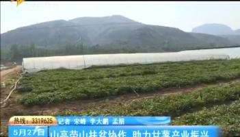 山亭荣山扶贫协作 助力甘薯产业振兴