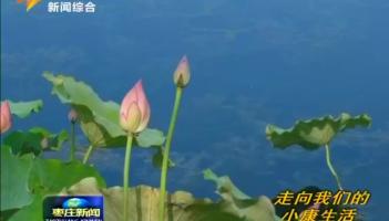 """""""一村一景""""扮靓美丽乡村"""