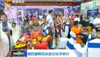 第四届榴花动漫文化节举行