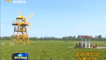 农旅融合撬动经济发展