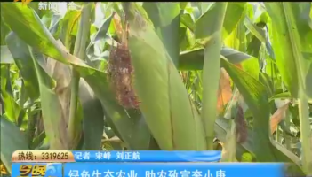 绿色生态农业 助农致富奔小康