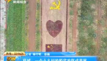 薛城:一个小乡村的脱贫攻坚成果展