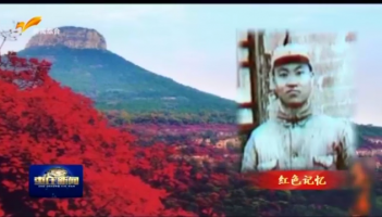 红色记忆:中共苏鲁边区临时特委